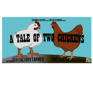 Video_ATaleOfTwoChickens